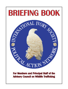 IEI BRIEFING BOOK